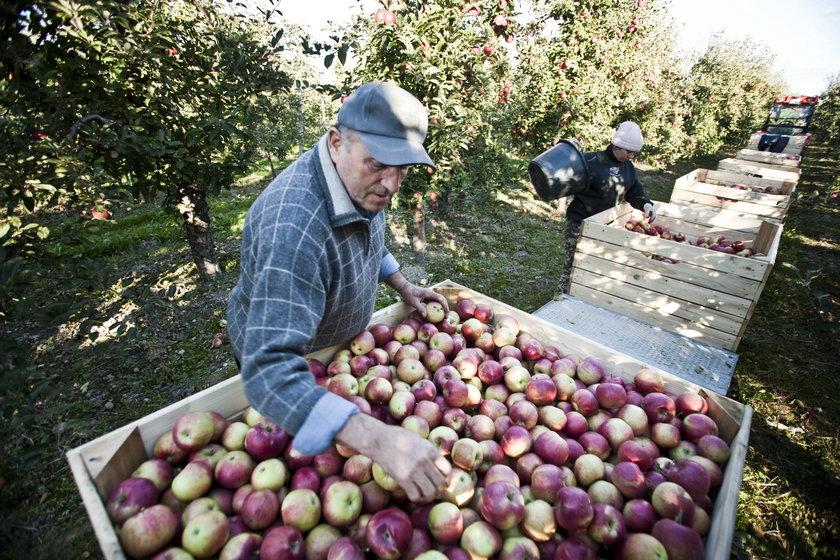 PiS: zawieśmy spłaty kredytów rolnikom!