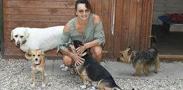 Adoptuj psa z domu tymczasowego. Dla naszych czytelników darmowa porada behawiorystyczna!