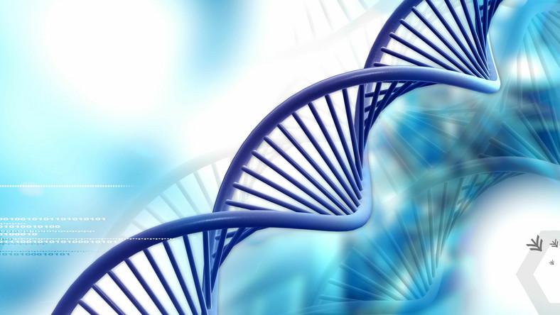 Naukowcy zidentyfikowali ponad 30 regionów w genomie, które prawdopodobnie odpowiadają za powstanie autyzmu