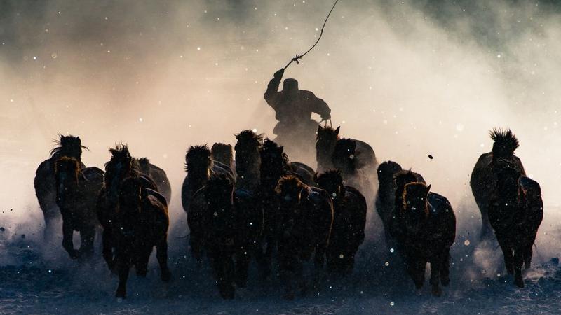 """""""Winter horseman"""" (pol. Zimowy jeździec), Anthony Lau"""