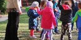 Przedszkola, żłobki i szkoły - kiedy będą otwarte? Padła zapowiedź