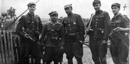 SLD: wśród Żołnierzy Wyklętych były też świnie, mordercy, złodzieje i gwałciciele