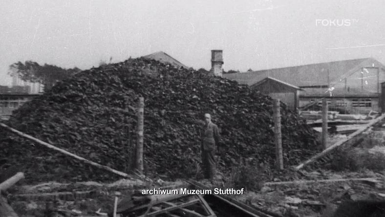 stutthof 3