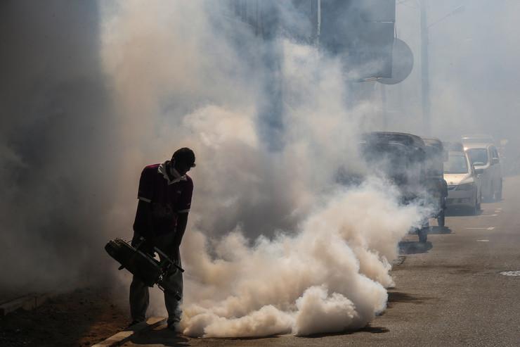 Tajland, denga groznica