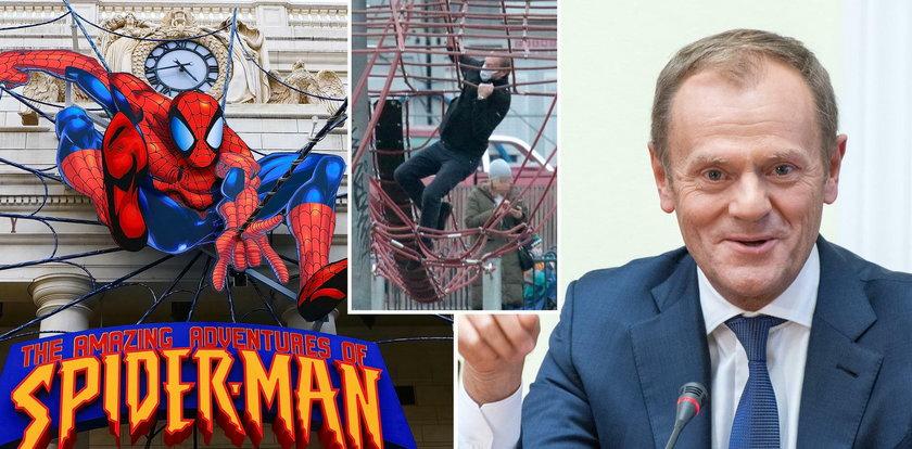 Wow! Donald Tusk jak Spider-Man