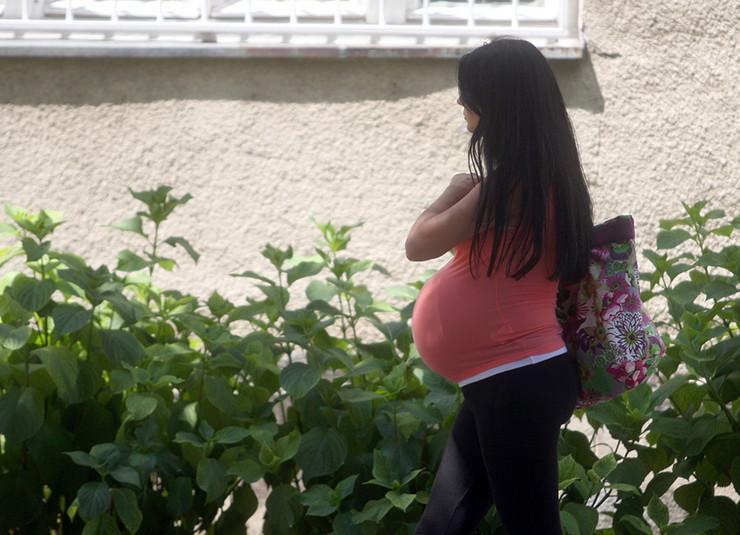 trudnice-foto-S-PASALIC (1)