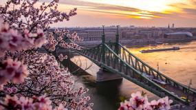 Zaplanuj weekend majowy w Budapeszcie - tanie i wygodne kwatery [DOBRA OFERTA!]