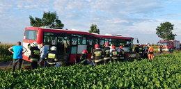 Autobus wpadł do rowu. Jest kilkunastu rannych