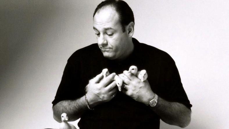 """Są aktorzy, którym rola życia przytrafia się niespodziewanie. Gdy pod koniec lat 90. James Gandolfini po raz pierwszy pojawił się na planie """"Rodziny Soprano"""", nie miał pojęcia, że przypieczętowuje swój los. Od tej pory dla widzów miał stać się Tonym Soprano, brutalnym, acz niepozbawionym wdzięku bossem mafii, który po godzinach próbuje rozwiązać swoje problemy na kozetce psychoanalityka"""