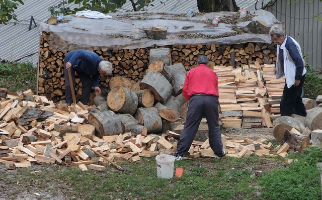 Duga zima i hladno proleće mnoge ostavili bez ogrevnog drveta