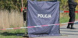 Horror w Wałbrzychu! Martwy noworodek leżał w krzakach