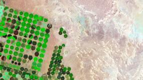 Zielone kręgi na środku pustyni. Zobacz, jak zmieniła się Arabia Saudyjska