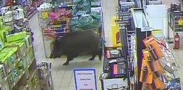 Rozjuszony wpadł do sklepu. Ludzie byli przerażeni!