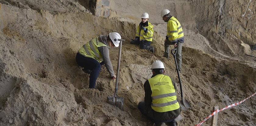 Metro odkrywa prehistoryczne stwory