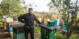 Groza! Tajemnicza zaraza zabija pszczoły!