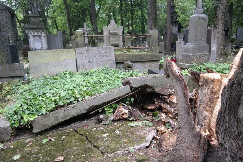 Zniszczone groby na Powązkach