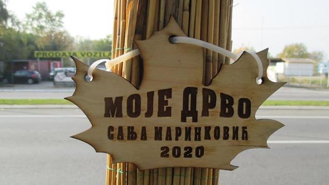 Drvo za Sanju Marinković