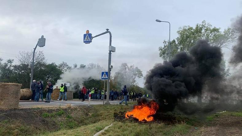Policja zatrzymała Kołodziejczyka w Koszutach