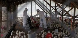 Rośnie liczba zakażeń groźną bakterią w Chinach!