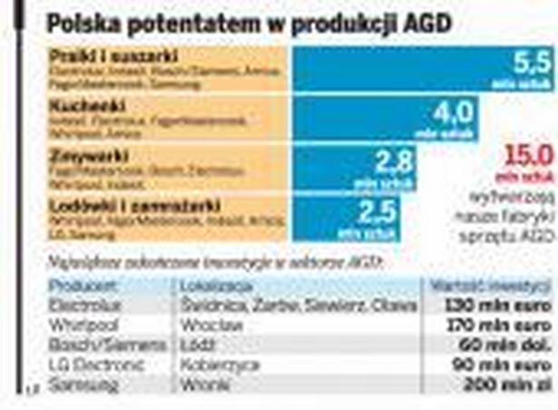 Polska potentatem w produkcji AGD