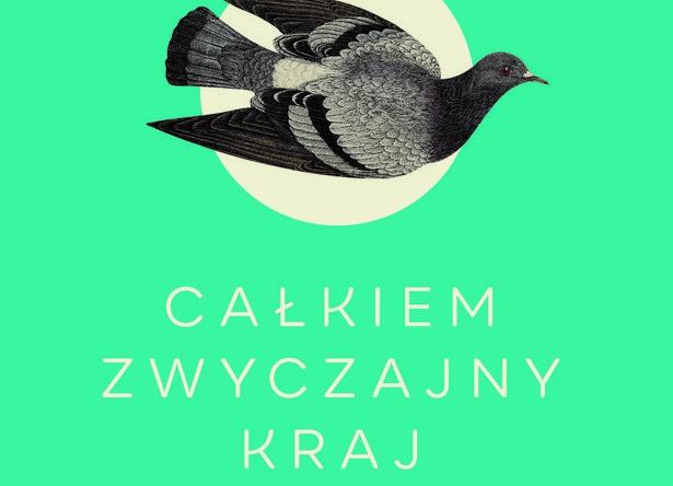 Całkiem zwyczajny kraj. Historia Polski bez martyrologii, Brian Porter- Szűcs
