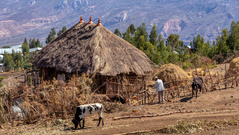 Etiopska wioska w regionie Oromia