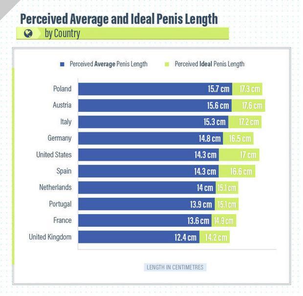 srednia wielkosc penisa w polsce