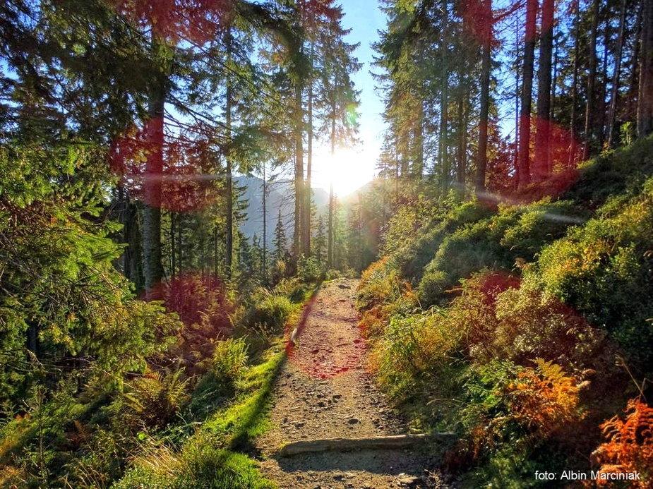 Tatry jesiennie, szlak z Bobrowieckiej Przełęczy na Grzesia