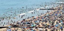 Atak nożem na zatłoczonej plaży! Są ranni
