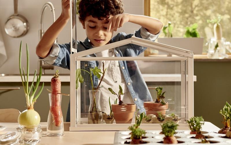 IKEA- Własny ogródek