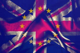 Brexit coraz bardziej na miękko