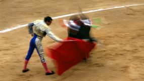 Noblista J.M.Coetzee krytykuje Hiszpanię za chęć ochrony i kontynuacji korridy