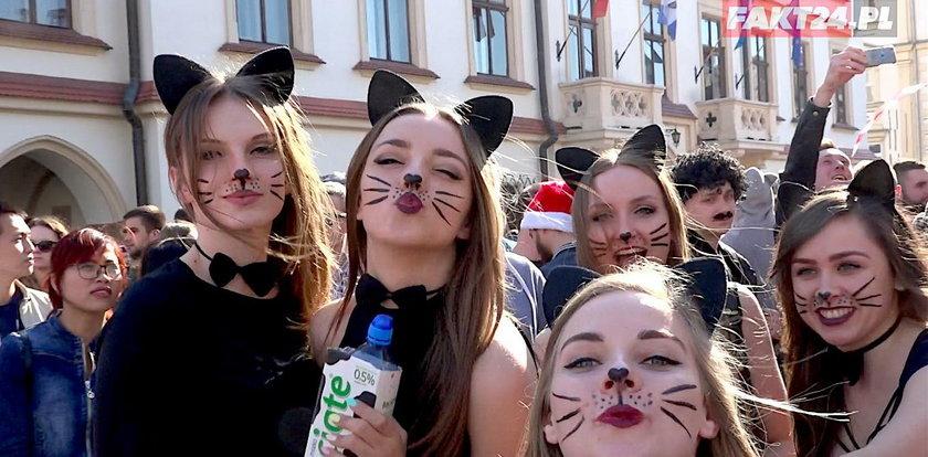 Tak się bawią studenci w Rzeszowie
