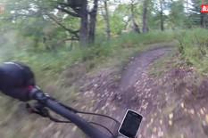 AP_susret_bicikliste_i_medveda_vesti_blic_safe