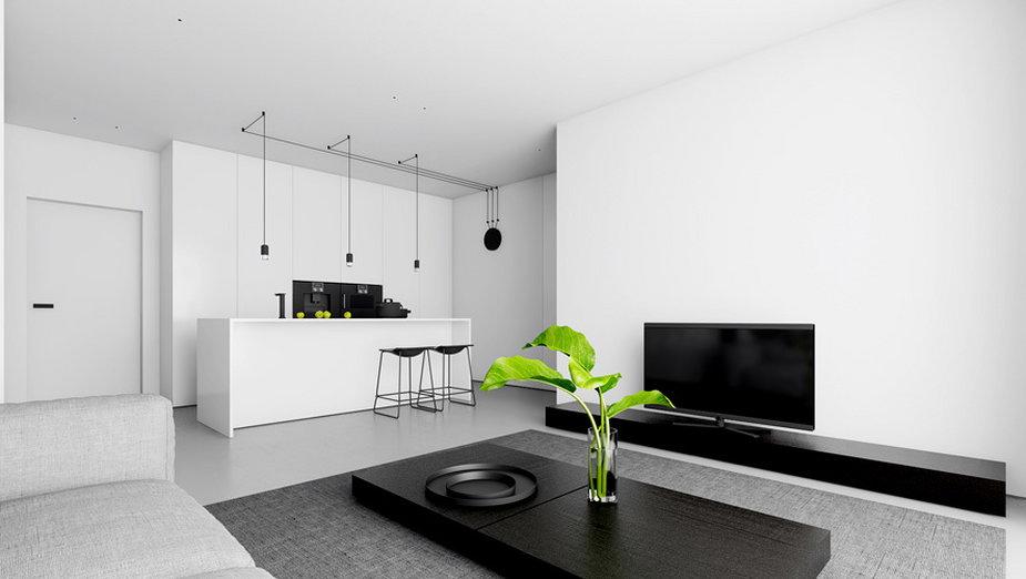 Minimalistyczny apartament w bieli