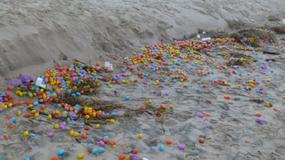 A to niespodzianka! Morze wyrzuciło na brzeg tysiące jajek