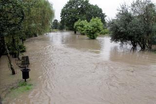 Pogotowie przeciwpowodziowe w gminie Elbląg. Zalana wieś Księżno