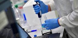 Naukowcy zidentyfikowali nowy wariant koronawirusa. Jest bardziej zakaźny