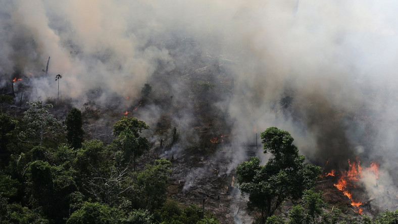 An aerial view of a tract of Amazon jungle burning as it is being cleared by loggers and farmers near the city of Novo Progresso,