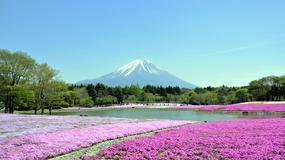 Kraje o największym wzroście liczby turystów w 2013 roku wg UNWTO - na czele państwa azjatyckie