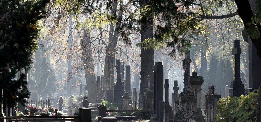 Likwidacja grobu na cmentarzu w Polsce, przedłużenie prawa do grobu - Jakie jest prawo?
