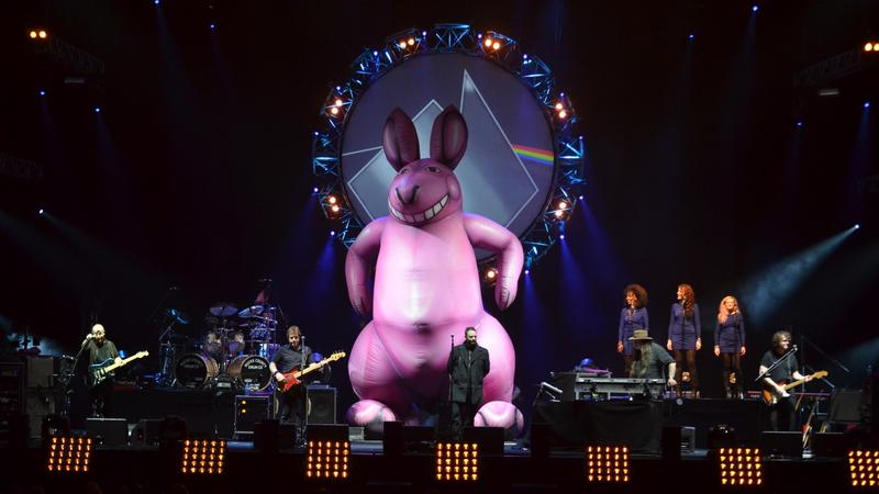 The Australian Pink Floyd w czasie koncertu