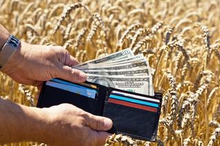 Podatek od upraw i hodowli będzie wyższy