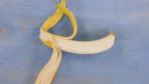Gljivica je ozbiljna pretnja proizvodnji banana