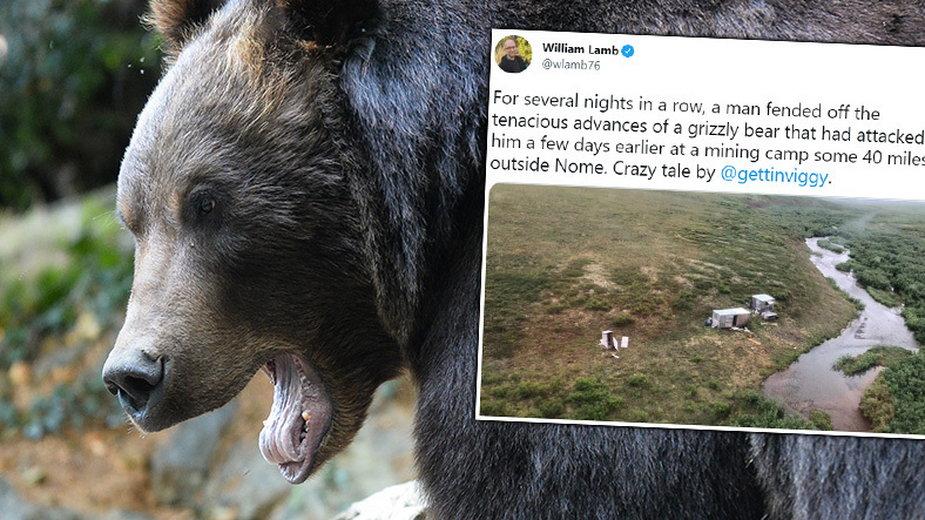 Mężczyzna przez tydzień toczył nierówną walkę z niedźwiedziem