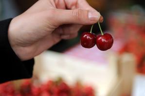 Ovo je voće koje će vam DONETI PARE, a od jedne vrste možete da zaradite i 5.000 evra mesečno