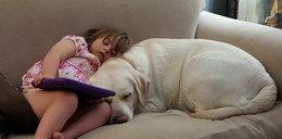 Pies bohater uratował dziecku życie. Na odległość!
