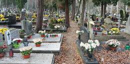 Bezdomny zamieszkał na cmentarzu. Załatwia się między grobami