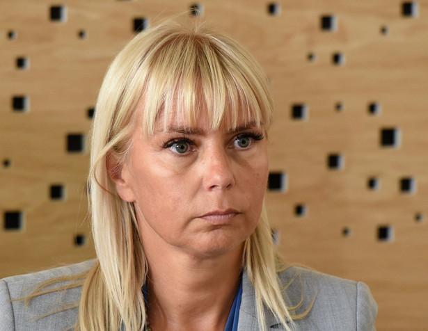 Elżbieta Bieńkowska. Fot. PAP/Radek Pietruszka