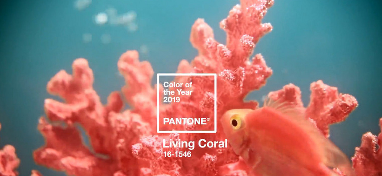 de44f9c16a308f Koral to kolor 2019 roku wg Pantone.